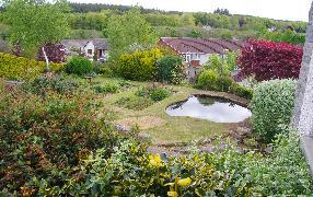 Water Gardening Direct Reviews Https Www Watergardeningdirect Com Reviews Feefo